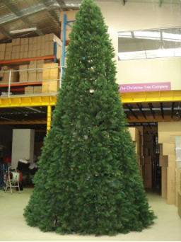 Cone Style Christmas Trees