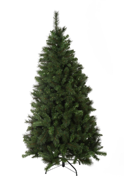 Slim Christmas Trees