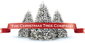 The Christmas Tree Company | Artificial Christmas Trees for Sale Australia Logo